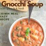 creamy tomato gnocchi soup made with San Marzano tomatoes